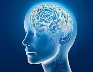 Brain experiencing opiate addiction